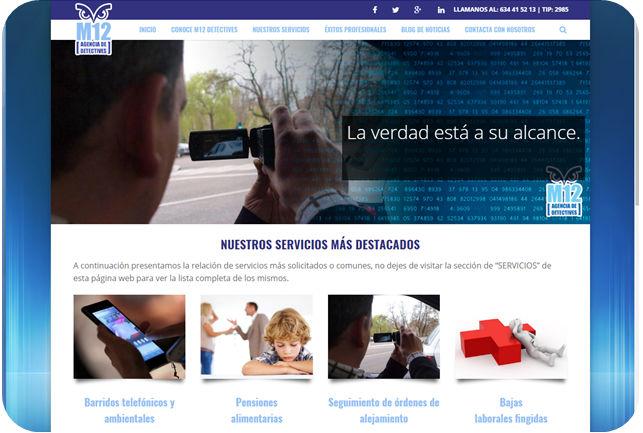 desarrollo-web-detectives-palencia